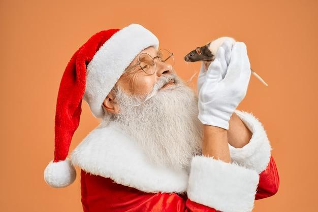 Portret van het stellen van de kerstman in studio met witte rat