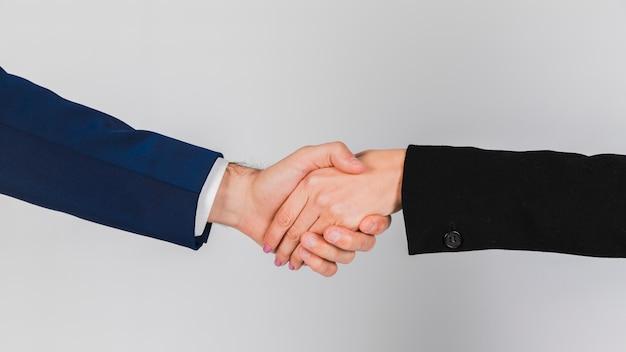 Portret van jonge bedrijfsmensen die handen schudden tegen grijze achtergrond