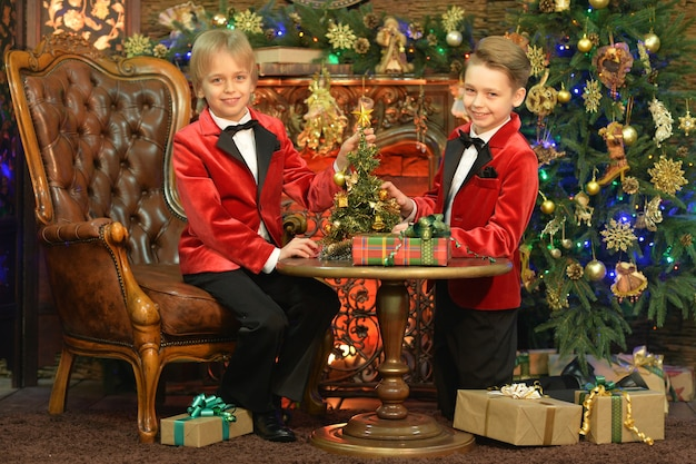 Portret van kleine jongens die poseren met kerstmis