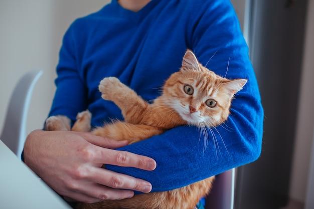 Portret van knappe jonge man houdt een rode kat in zijn armen op de keuken.