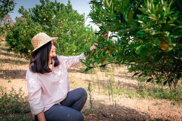 Portret van landbouwkundige boer vrouw is oogst plukken sinaasappel in biologische boerderij.