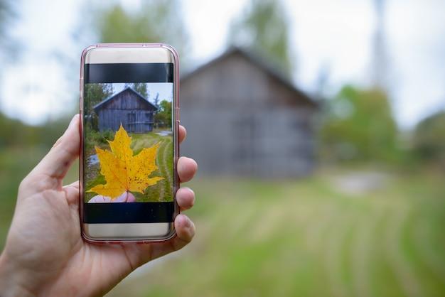 Portret van mobiele telefoon met foto van de herfstesdoornblad genomen mening van houten plattelandshuisje in openlucht
