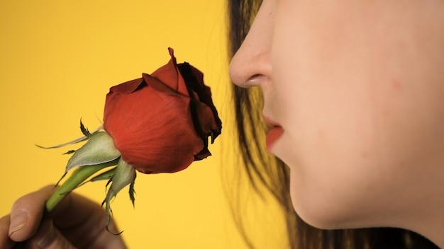 Portret van mooi meisje op geel in haar hand houdt ze rode roos en snuift bloem.