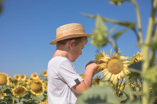 Portret van mooie kleine blonde jongen jongen op zomer zonnebloem veld buitenshuis. schattig voorschoolse kind plezier op warme zomerdag. kinderen en natuur. fijne zomer.