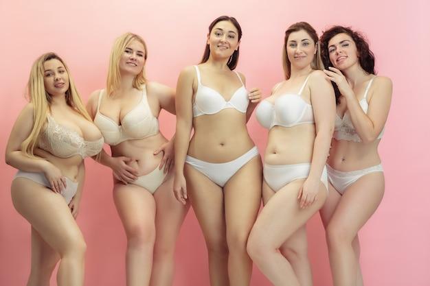 Portret van mooie plus grootte jonge vrouwen die op roze stellen Gratis Foto
