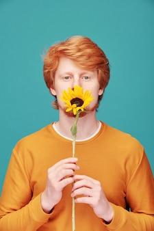 Portret van rustige jonge roodharige man in oranje trui zonnebloem houden en ruiken het op blauw
