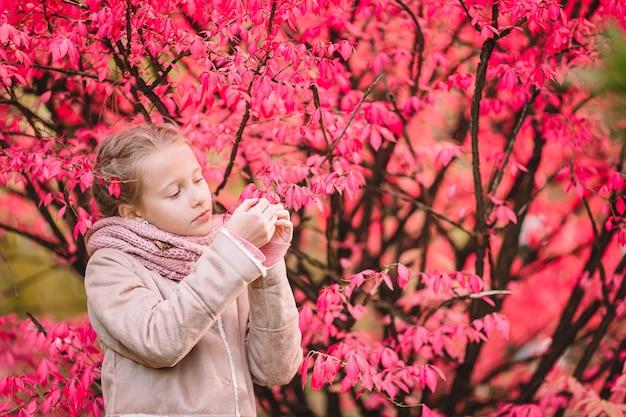 Portret van schattig klein meisje buitenshuis op mooie herfstdag buitenshuis