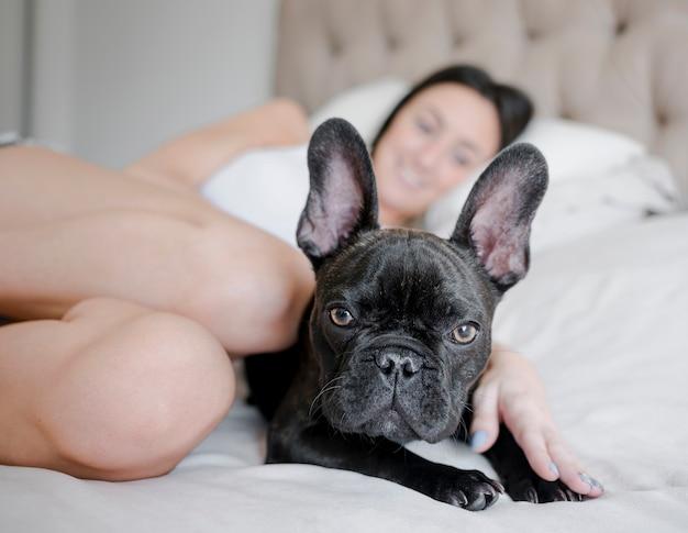 Portret van schattige kleine puppy op het bed