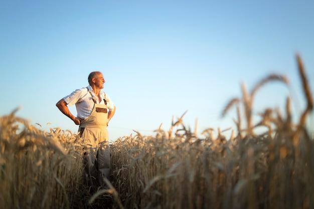 Portret van senior boer agronoom in tarweveld kijken in de verte