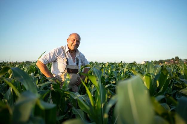 Portret van senior hardwerkende boer agronoom in maïsveld gewassen vóór oogst controleren