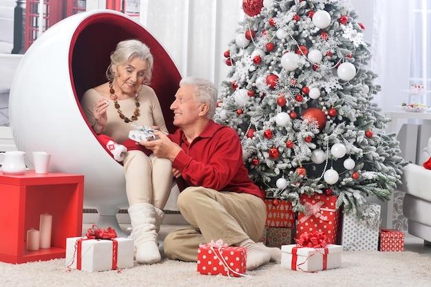 Portret van senior koppel met cadeau met kerstversiering op achtergrond