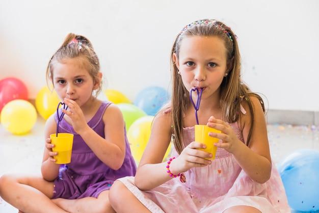 Portret van twee leuke zusters die sap met stro thuis drinken