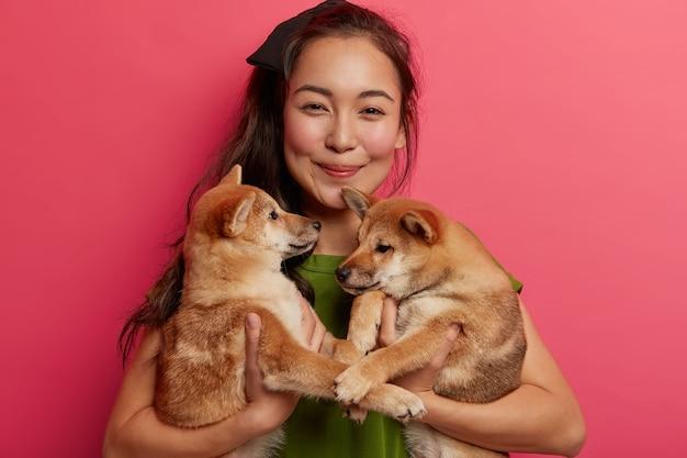 Portret van twee schattige lieve puppy's die familieleden zijn, poseren op de handen van de vrouw, met elkaar spelen, zich voorbereiden op de wandeling.