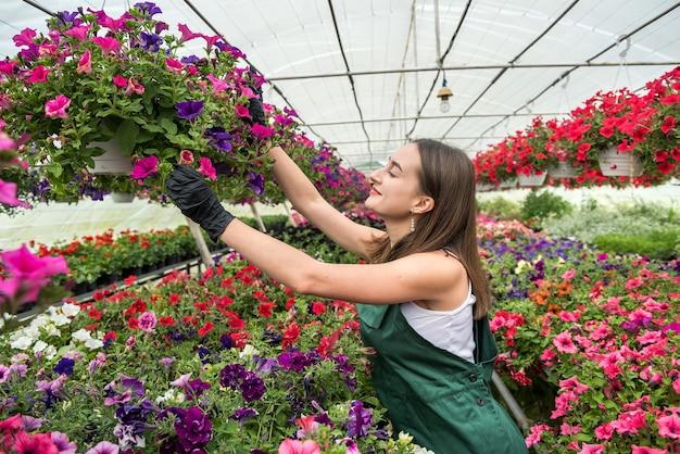 Portret van vrouwelijke kwekerij die met bloemen in de mooie lichte serre werkt