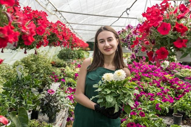 Portret van vrouwelijke tuinman die schort draagt tijdens het werken in kas