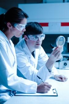 Portret van wetenschappers die petrischaal bekijken