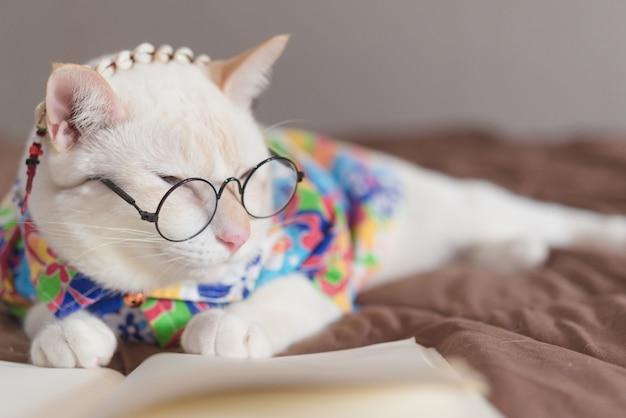 Portret van witte kat die glazen draagt en boek leest