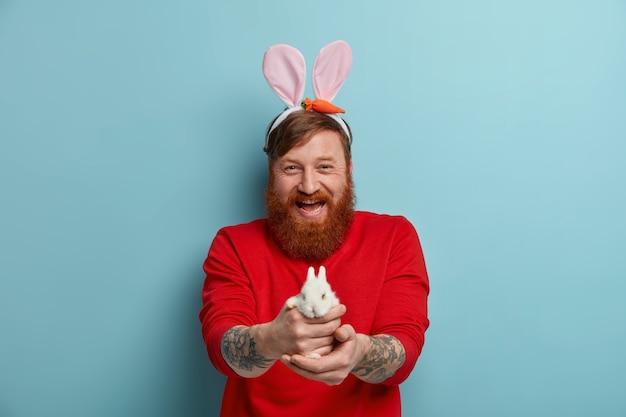 Positieve bebaarde roodharige man geeft je een klein wit pluizig konijntje, heeft een gelukkige feeststemming voor vakantie, bereidt zich voor op pasen, draagt een rode trui en konijnenoren, geïsoleerd op een blauwe muur.