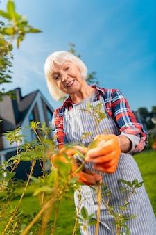 Positieve vibes. een opgewekte glimlachende oude dame die zich geweldig voelt terwijl ze tijd doorbrengt in de tuin