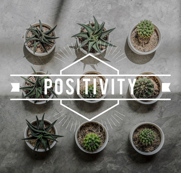 Positiviteit break passion never fail moment