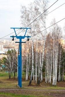 Post met kabelbanen naast berkenbomen in de herfst