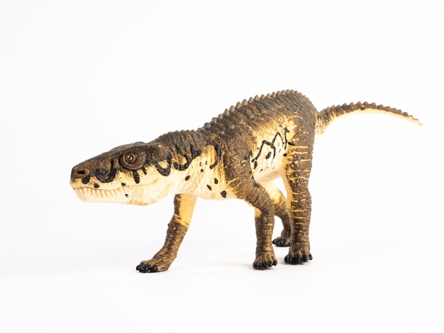 Postosuchus-dinosaurus op wit