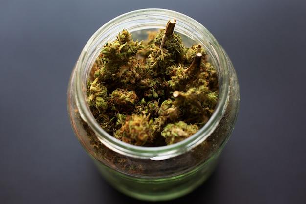 Pot met gedroogde en behandelde marihuanaknoppen, medische geurige cannabis uit de koelkast