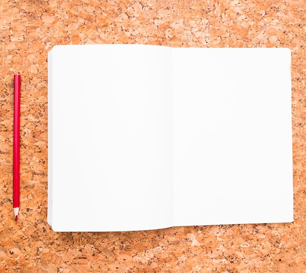 Potlood en geopende notebook