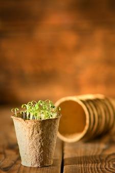 Potplanten groeien in biologisch afbreekbaar veenmos
