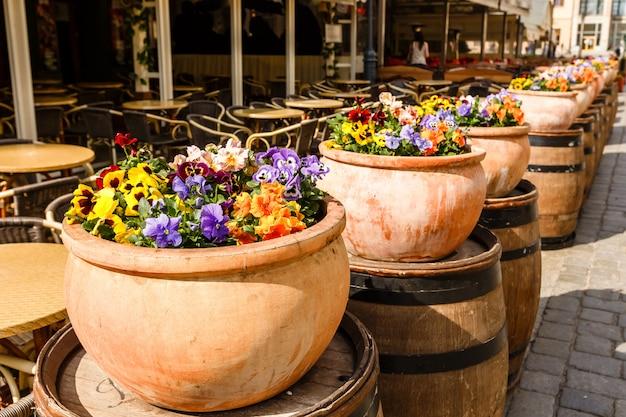 Potten met felgekleurde bloemen op een rij bij het café in de oude stad