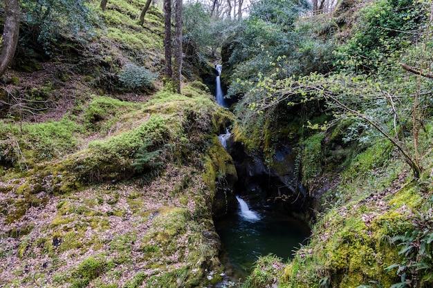Poulanass-waterval in het glendalough-bos co wicklow