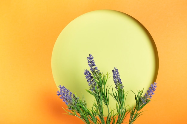 Ppaer-cirkel met lavendel exemplaar-ruimte