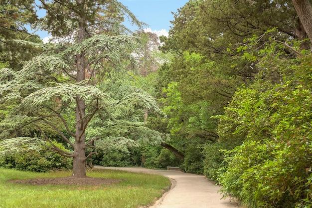 Prachtig aangelegd steegje, wandelpad, wandel- en recreatiegebied in het park op de krim