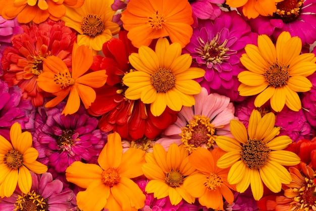 Prachtig arrangement van bloemenbehang