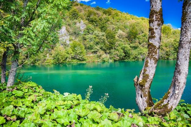 Prachtig azuurblauw meer in het plitvice national park, kroatië
