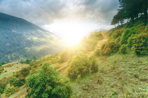 Prachtig berglandschap