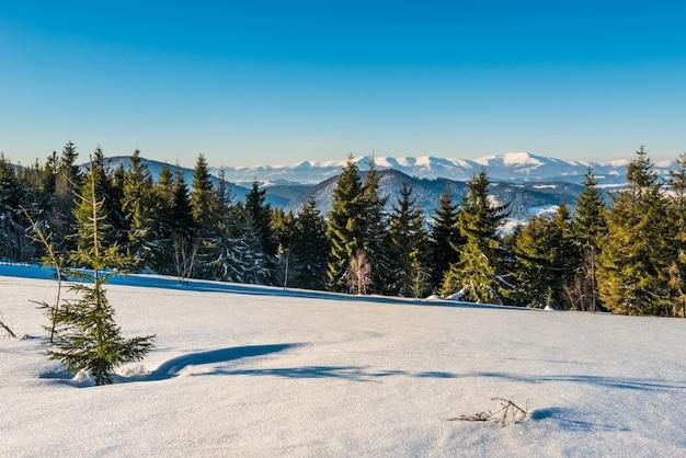 Prachtig betoverend panorama van een skipiste bedekt met een dikke laag sneeuw