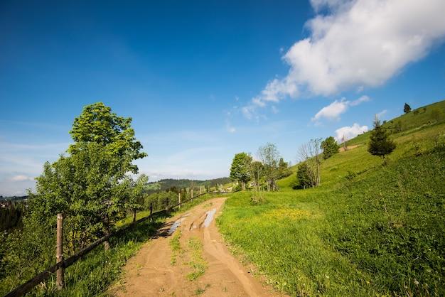 Prachtig betoverend uitzicht van een landelijk dorp gelegen in een heuvelachtig gebied tussen sparren en loofbomen en gras tegen witte wolken en blauwe lucht. plaats voor tekst