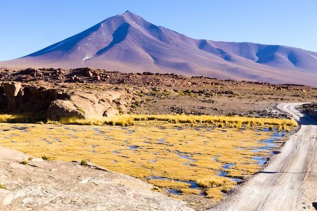Prachtig boliviaans landschap, bolivia. meren en bijbehorende wetlands genaamd bofedales.