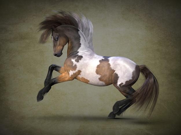 Prachtig gevlekt paard 3dvisualisatie