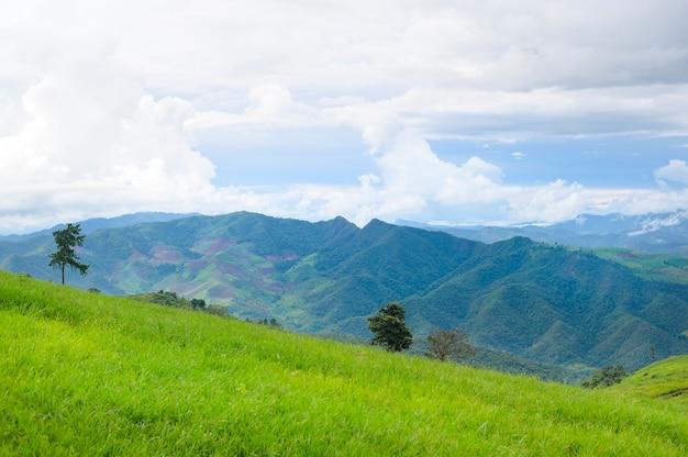 Prachtig groen uitzicht op de bergen in het regenseizoen