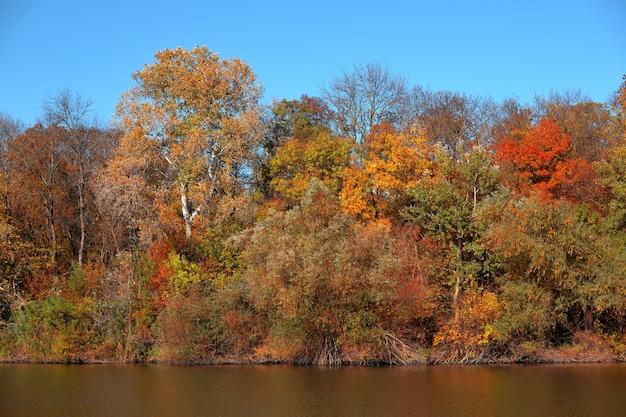 Prachtig herfstbos aan het meer, tegen de achtergrond van een strakblauwe lucht zonder wolken