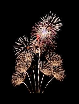 Prachtig kleurrijk vuurwerk dat in de nacht explodeert