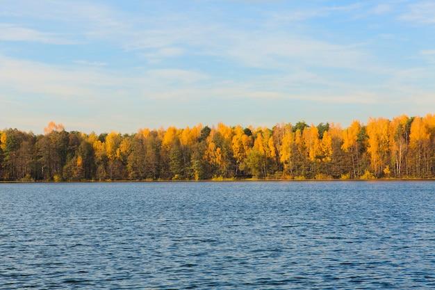 Prachtig landschap. groot meer in de herfstbos. herfst natuur