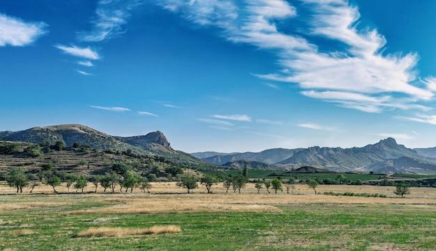 Prachtig landschap. helder zomerlandschap met bergen, velden, drieën en verbazingwekkende blauwe lucht.