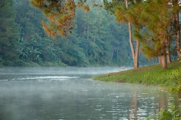 Prachtig landschap - mist op het meer in de ochtend