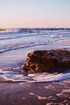 Prachtig landschap van de zee tijdens een geweldige zonnige dag op het strand