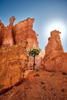 Prachtig landschap van een canyonlandschap in bryce canyon national park, utah, vs