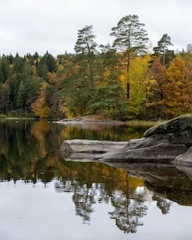 Prachtig landschap van een reeks herfstbomen die overdag in het meer reflecteren