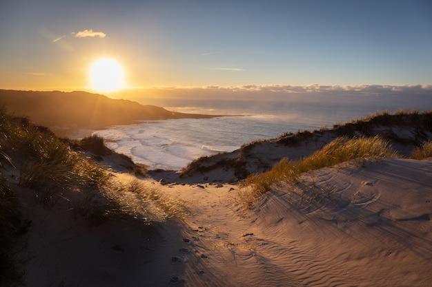 Prachtig landschap van een zanderige kust met uitzicht op zee